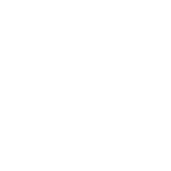 BIC lighter white drop test icon